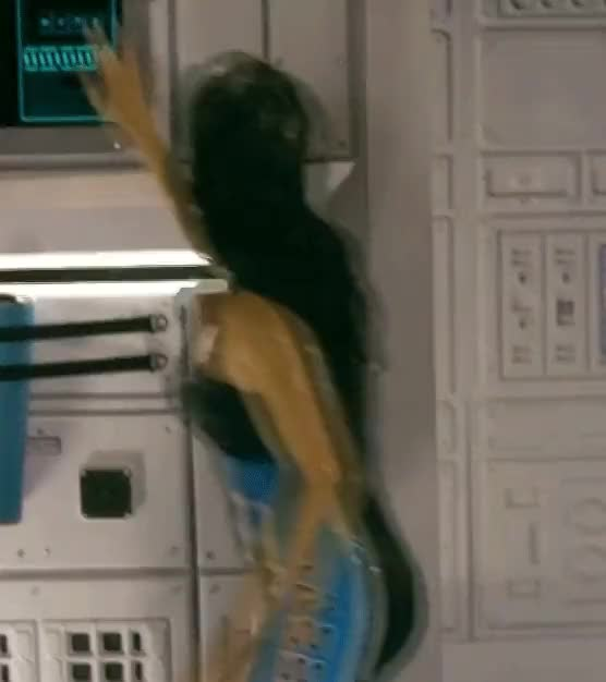 Watch Kristin Kreuk 3 (reddit) GIF on Gfycat. Discover more celebgfys GIFs on Gfycat