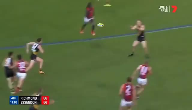 Watch and share Trent Cotchin - Don't Argue On Tippa GIFs on Gfycat