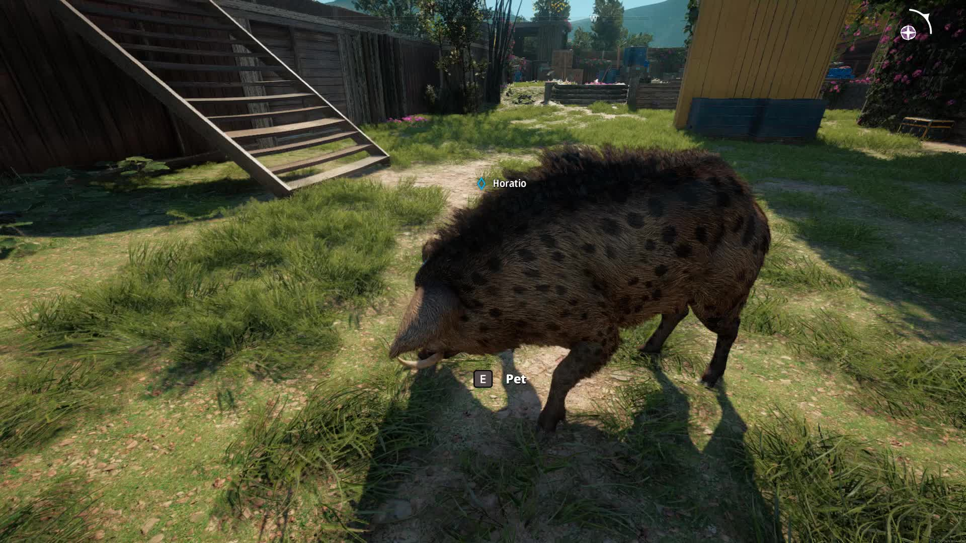 11 Reasons To Immediately Upgrade Your Giant Pig In Far Cry New