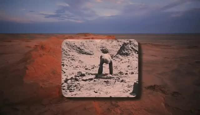 Prehistoric Predators - Dinosaurs Alive Documentary GIFs