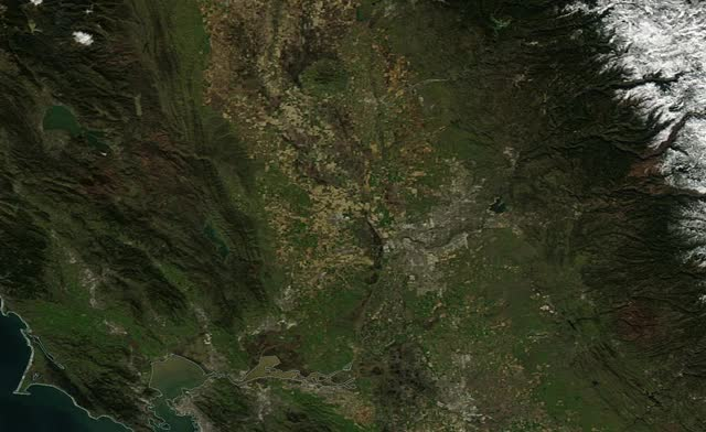 Watch Sacdelta closeup GIF on Gfycat. Discover more related GIFs on Gfycat
