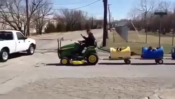 Elderly man built a train to take stray dogs on adventures GIFs