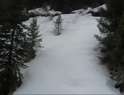 Watch and share Avalanche GIFs on Gfycat
