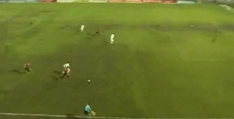 Watch this goal GIF by Tomáš Reiner (@reiny) on Gfycat. Discover more goal, goals GIFs on Gfycat