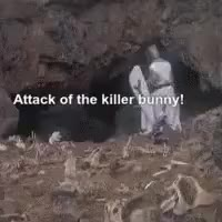 Watch monty python GIF by Kerry Stern (@pearler) on Gfycat. Discover more montypython, Killer bunny, pearler GIFs on Gfycat