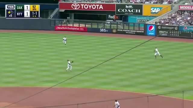 Watch Castro Judge teamwork yankees GIF on Gfycat. Discover more related GIFs on Gfycat