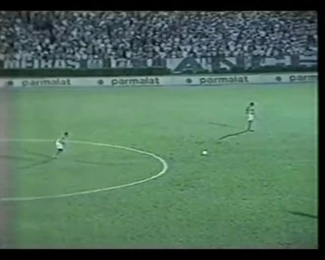 Watch and share Palmeiras GIFs and Gremio GIFs on Gfycat