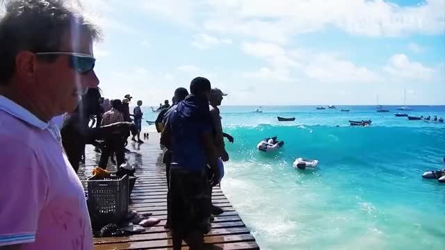 Watch Abandon Ship! GIF by ViperSRT3g (@vipersrt3g) on Gfycat. Discover more boat, fail, nononono, ocean, wastedgifs GIFs on Gfycat