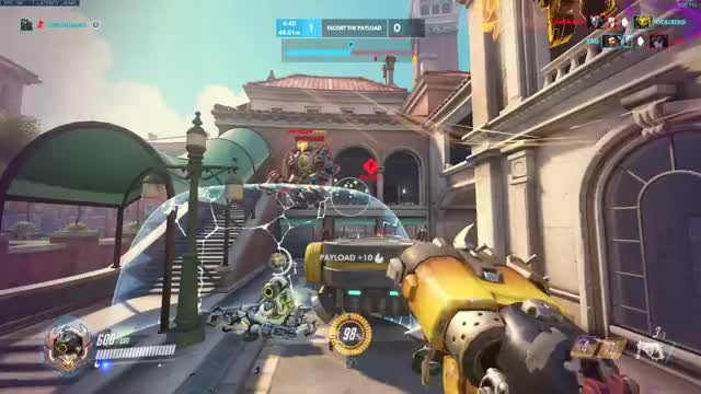 Watch Hog Airlines GIF on Gfycat. Discover more overwatch GIFs on Gfycat