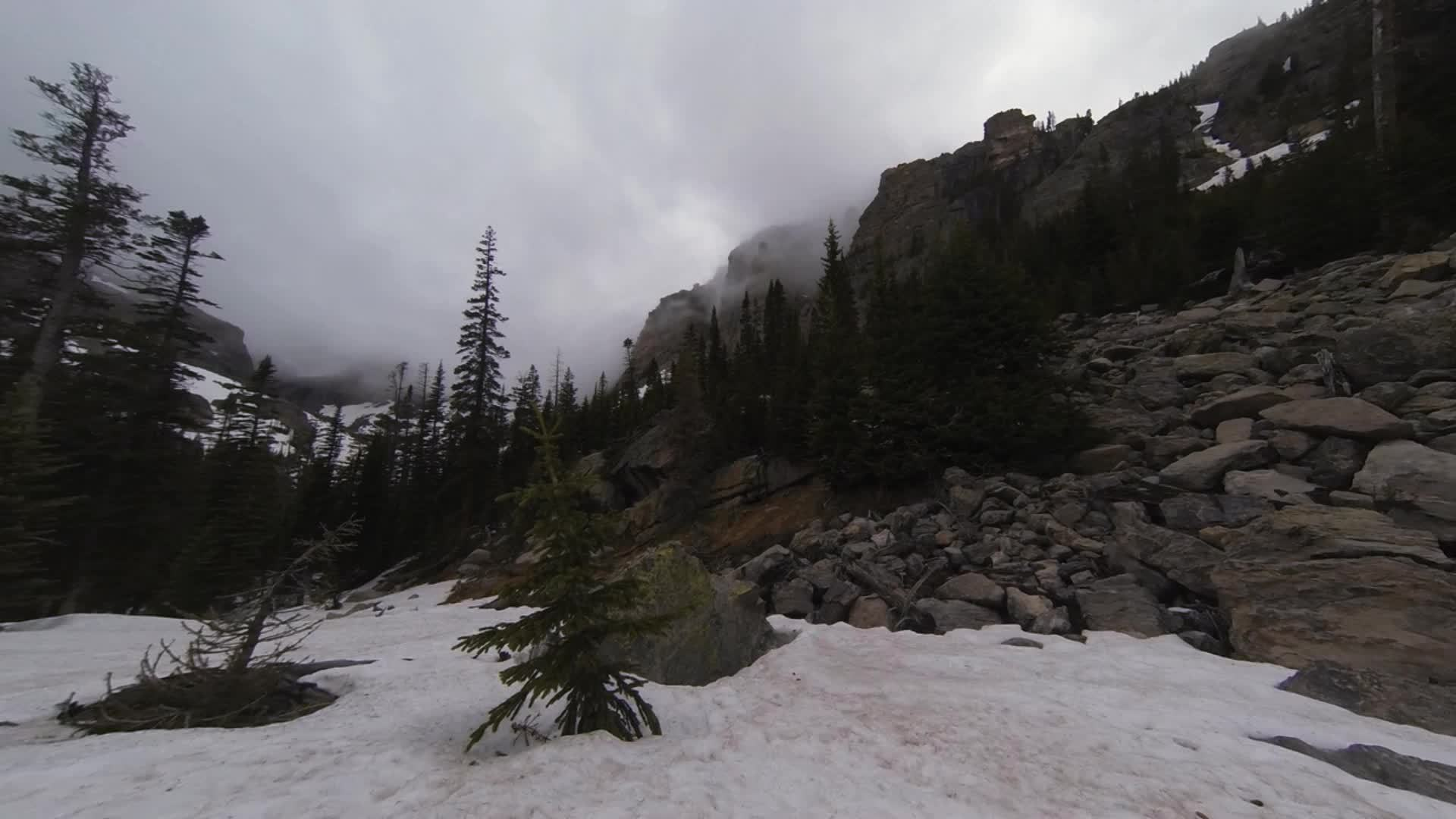 earthgifs, Andrews Creek, Rocky Mountains NP, Colorado GIFs