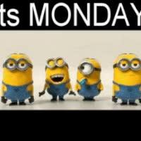Watch and share Its Morning Yippee Photo: Its Monday Minionsmonday.gif GIFs on Gfycat
