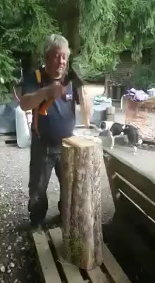 Watch Beautiful Woodworking GIF by @spook30 on Gfycat. Discover more related GIFs on Gfycat
