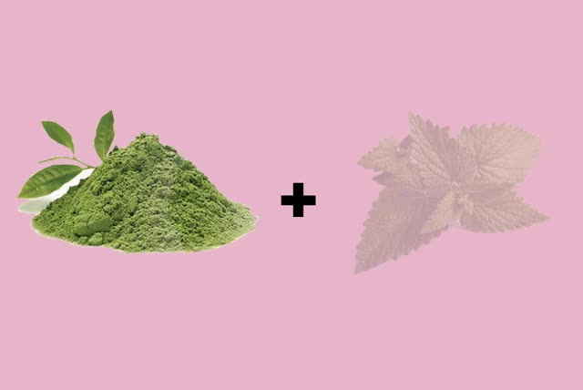 Watch Thank You Very Matcha Mint GIF on Gfycat. Discover more related GIFs on Gfycat