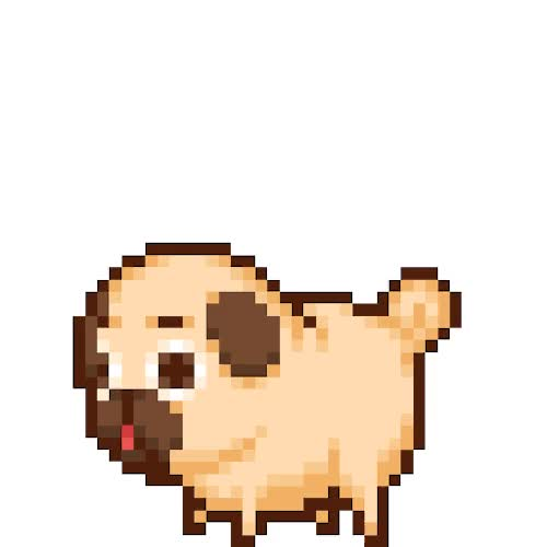 Watch and share Pug Animated Gif Picture GIFs on Gfycat