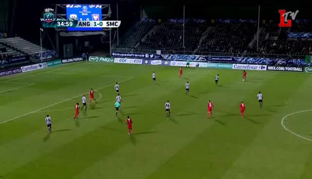 Angers SCO 3 - 1 Caen (01.02.2017 // by LTV)