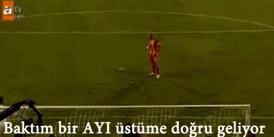 Watch this GIF on Gfycat. Discover more felipe melo, fenerbahce, galatasaray, melo, volkan demirel GIFs on Gfycat