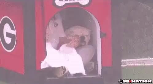 Watch and share Bulldog GIFs on Gfycat