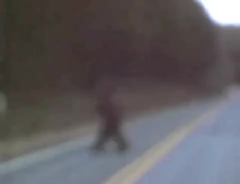 Watch Bigfoot hello GIF on Gfycat. Discover more hoax GIFs on Gfycat