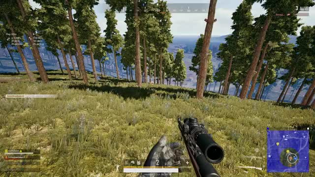Watch and share Chicken Dinner GIFs and Erangel GIFs by Crims0nsin on Gfycat