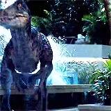 Watch Alpha  Beta  Omega GIF on Gfycat. Discover more 10k, 1k, 2k, 3k, 5k, chris pratt, indominus rex, jurassic world, jurassicdaily, jurassicedit, jurassicmovies, jw spoilers, jwedit, mygif, prattedit, velociraptor GIFs on Gfycat