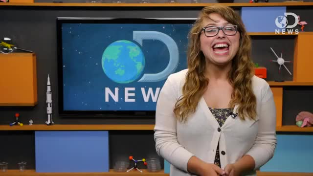Watch The Dirty Truth About E-Cigs (reddit) GIF on Gfycat. Discover more laci green GIFs on Gfycat