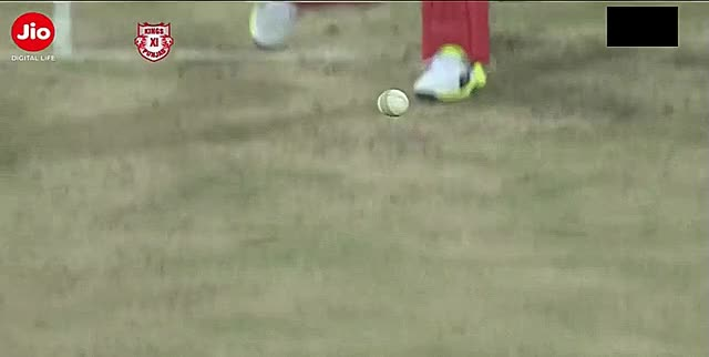 Watch ABD hits , Maxwell watches, Crowd cheers GIF on Gfycat. Discover more Cricket GIFs on Gfycat