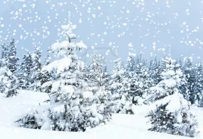 Watch and share Paysage Sous La Neige. GIFs on Gfycat
