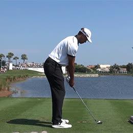 golf, golfing, sports, golf putter GIFs