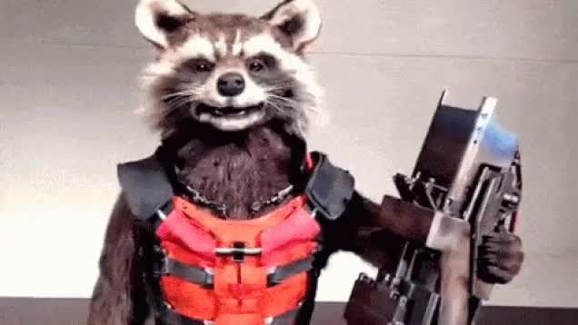 Watch and share Raccoon GIFs and Racoon GIFs on Gfycat
