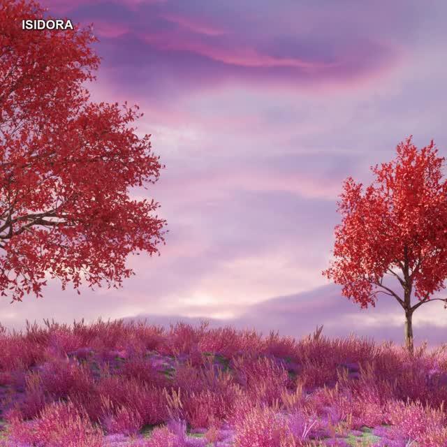 Watch and share Spring GIFs by isidorashana on Gfycat