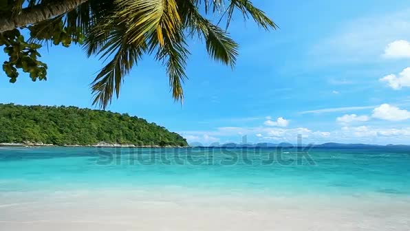 stock-footage-peaceful-tropical-beach GIFs