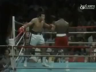 Watch muhammad ali GIF on Gfycat. Discover more awesome, gfycats GIFs on Gfycat