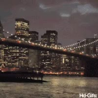Watch and share Brooklyn GIFs on Gfycat