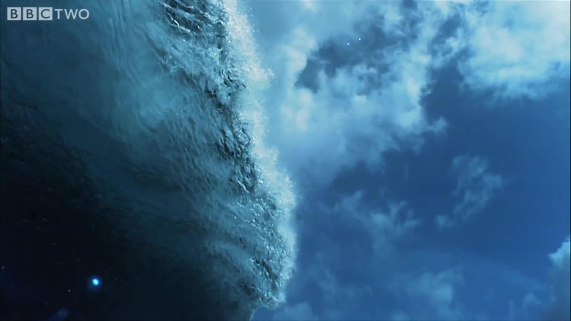 Barrel, HD, Monster, Motion, Pohnpei, Ponape, Sick, Slo, Slow, Super, Surf, Surfing, Vortice, Vortices, Waves, mo, wave, surfing GIFs