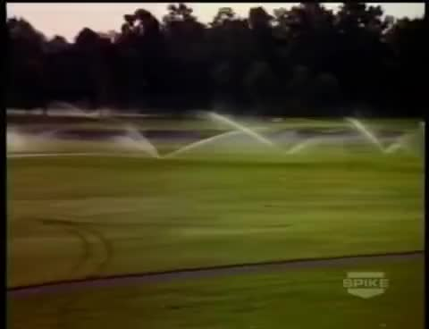 Watch and share Caddyshack Gopher GIFs on Gfycat