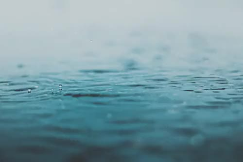 Watch and share Nature Photography GIFs and Pluviophile GIFs on Gfycat