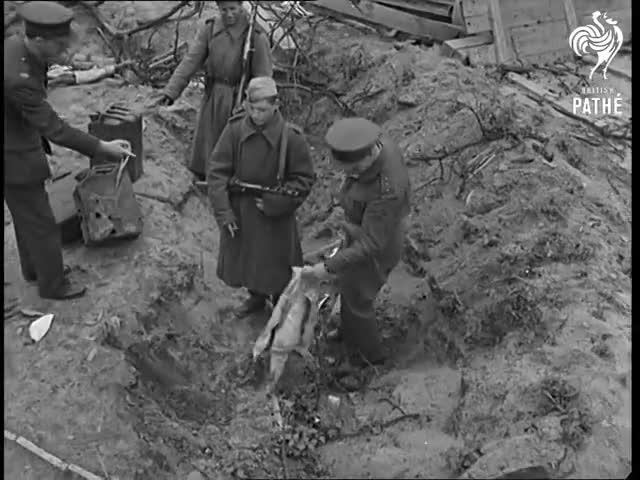Watch British Soldier mocking Hitler GIF on Gfycat. Discover more 45/057, Adolf, BritishPathe, Chancellory, Fuhrer, Jack, Reichstag, Theodora, Union, documentary GIFs on Gfycat