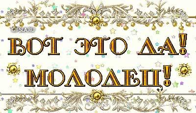 Watch and share Молодец GIFs on Gfycat