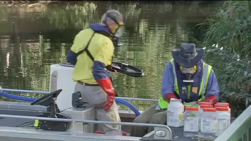 Watch and share Hydrogen Peroxide Is Poured Into The River Torrens GIFs on Gfycat
