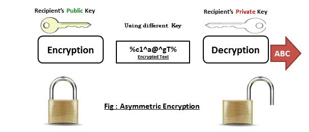 Watch and share Asymmetric Encryption GIFs on Gfycat