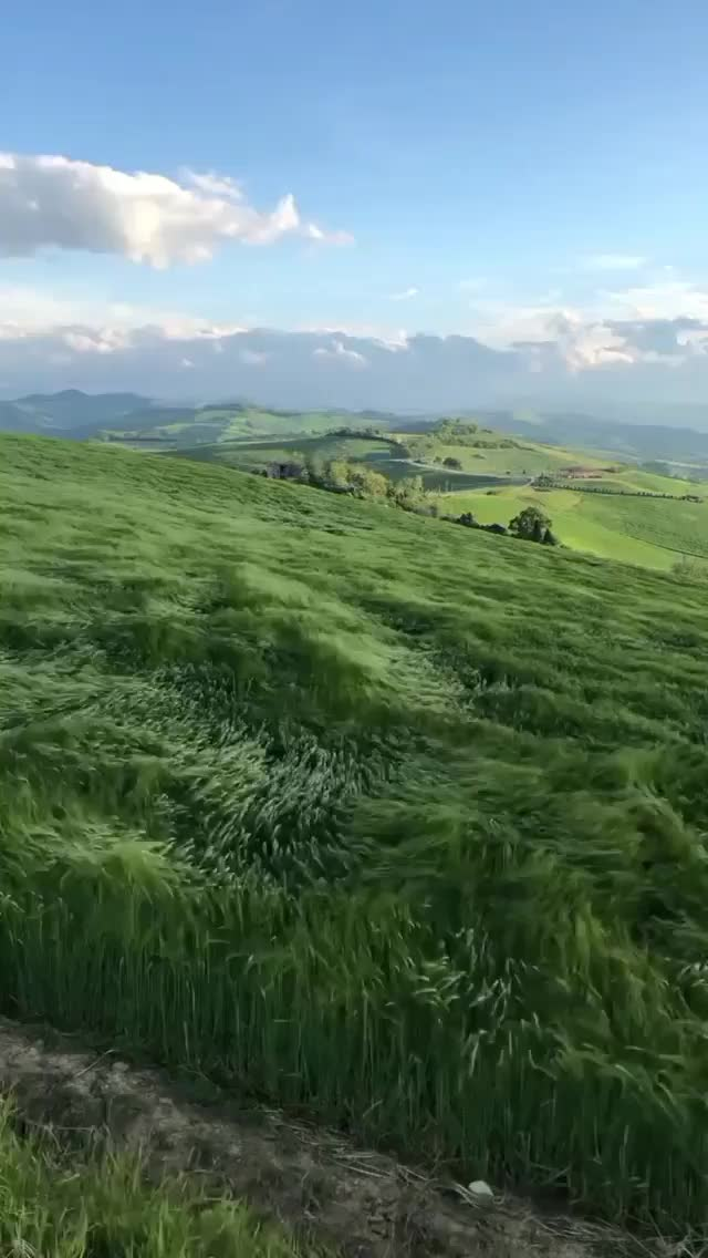 Watch and share Hills Of Bologna Italy GIFs by Boojibs on Gfycat