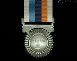 🎖 military medal GIFs