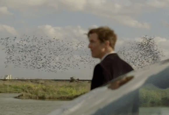 truedetective GIFs