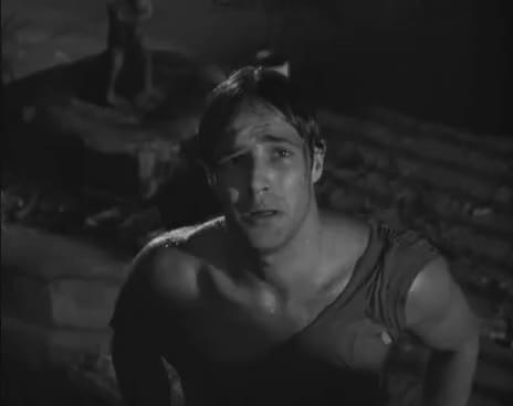 Watch and share Marlon Brando ~ 'Hey Stella!'~ A Streetcar Named Desire GIFs on Gfycat