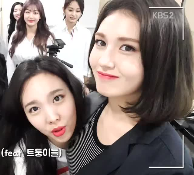 Watch and share Dahyun GIFs and Nayeon GIFs by Dang_itt on Gfycat