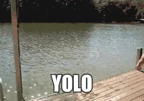 Watch this yolo GIF by Reaction GIFs (@sypher0115) on Gfycat. Discover more i regret nothing, yolo, you only live once GIFs on Gfycat