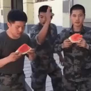 Watch Watermelon eating contest • r/BetterEveryLoop GIF on Gfycat. Discover more related GIFs on Gfycat
