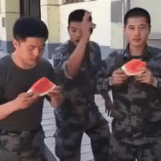 Watermelon eating contest • r/BetterEveryLoop GIFs