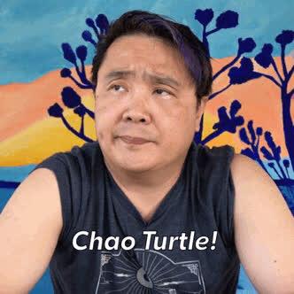 KimHuat, Singapore, mrbrown, Kim Huat Chao Turtle GIFs