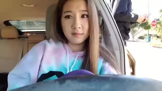 Fuslie.exe has stopped working